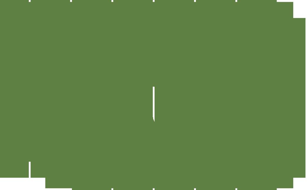 Gilmour Bank Alpaca